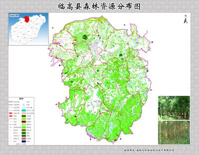 临高县森林资源分布图 - 海南天际林业规划设计有限